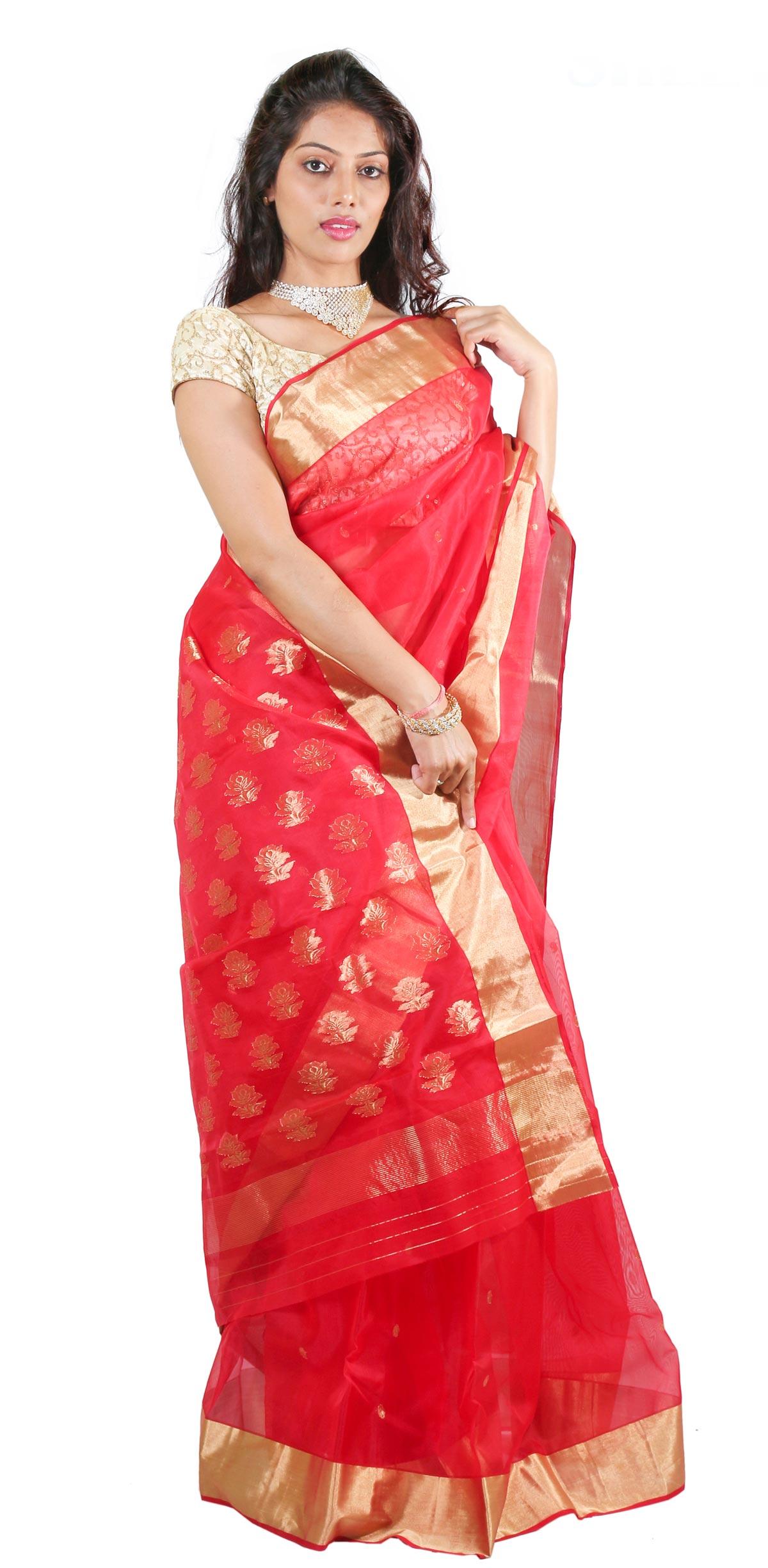 Deodi Tani thos Patela Fancy Pallu