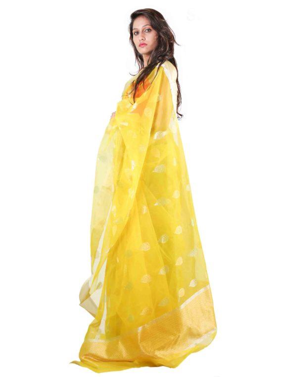 Patta Pan rich Lahar Silk